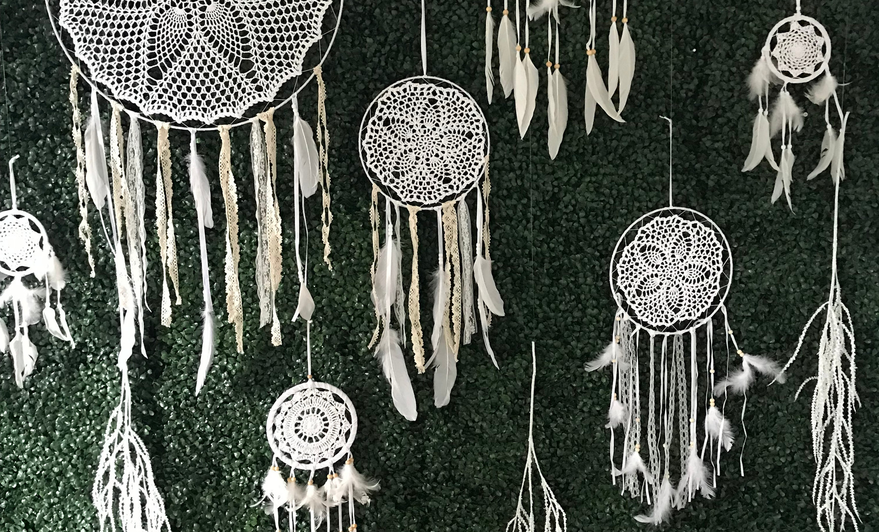 Dreamcatchers on Hedge Wall