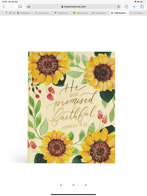 CSB NOTETAKING BIBLE: SAVANNAH THEME | HOSANNA REVIVAL