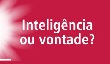 Inteligência ou vontade?