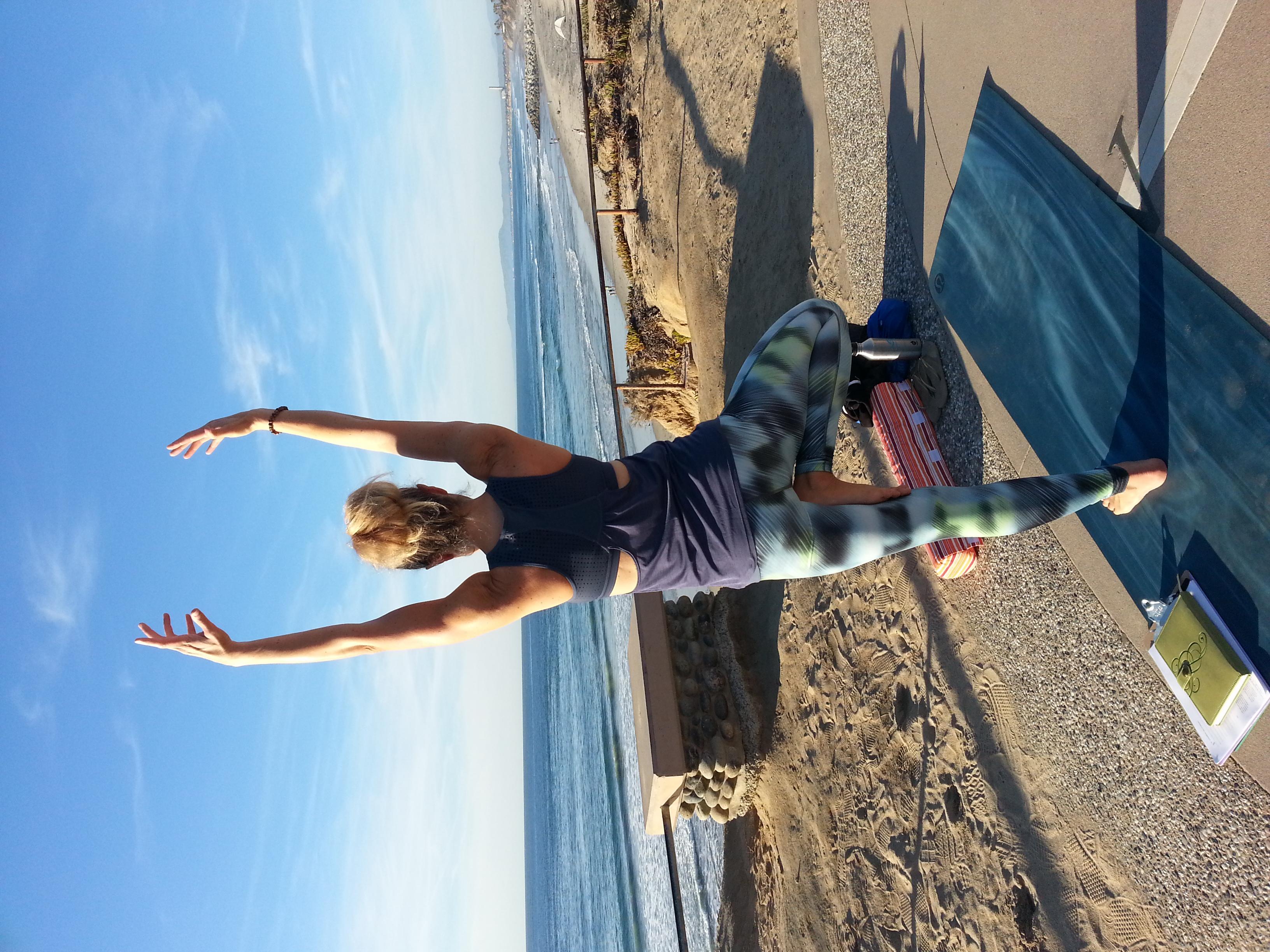 South Ponto Beach - Compass Point