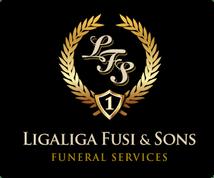 3bef672f-35452571-0-ligaliga-logo_05y04y