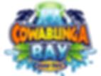 Cowbunga Bay in Henderson Nevada