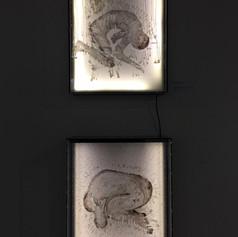 exposiciones16-min.jpg