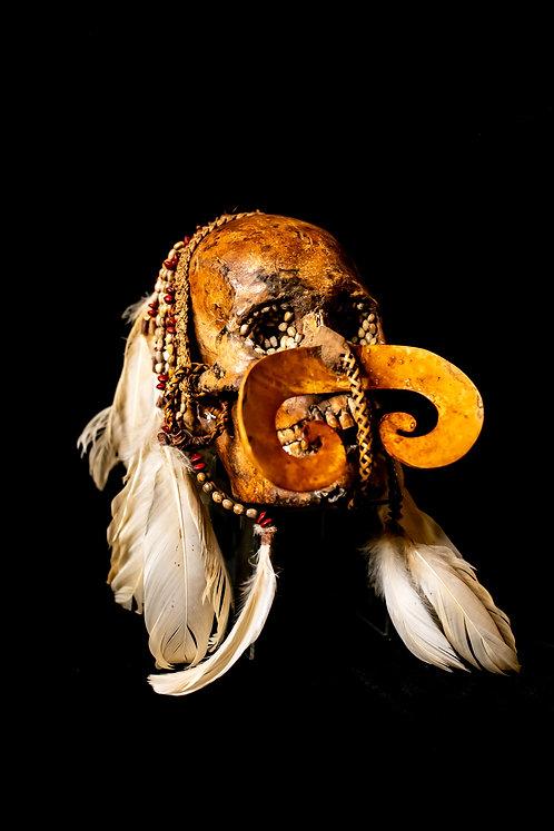 Ndambirkus Asmat Tribe Ancestor Skull West Papua angled view