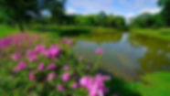 lakes.jpg