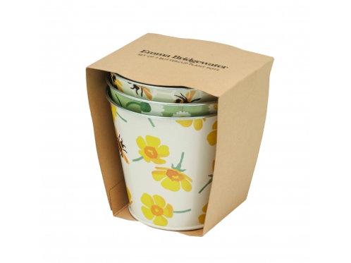 Decorative Herb Pot Set