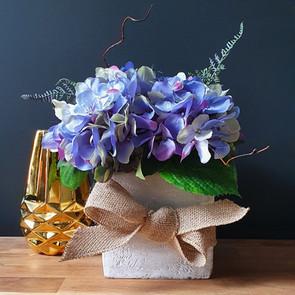 pretty lilac 55