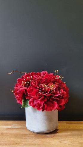 """Red Hydrangeas"""