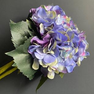 spring purple