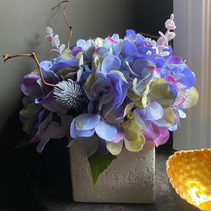 lavender 50