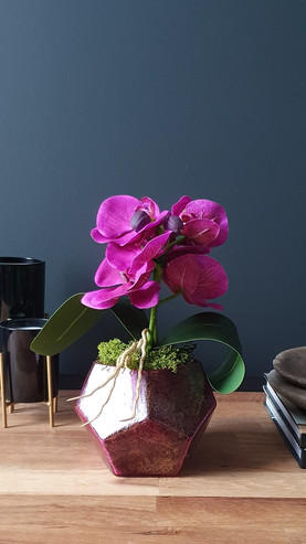 """""""2 Stem Deep Pink Baby Orchid"""""""