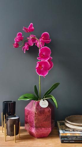 """Large 1 Stem Fuchsia Orchid"""
