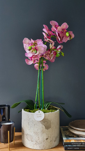 """""""Large 3 Stem Two Tone Pink Orchid"""""""