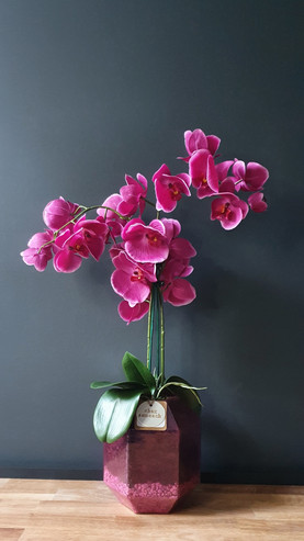 """""""Double Deep Pink Orchid"""""""