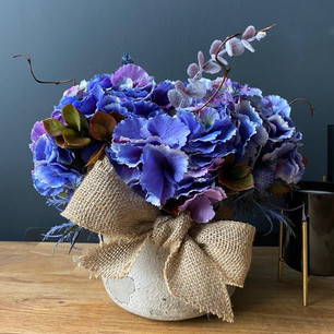 violet hydrangea 60