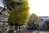 園内の様子②.JPG