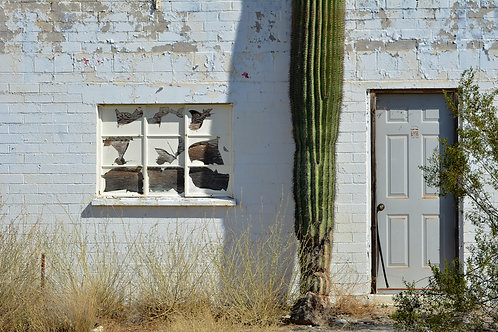 Arizona Cactus House