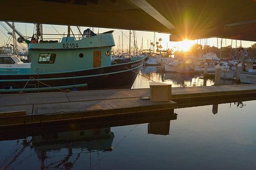 Oceanside Harbor Back in Port