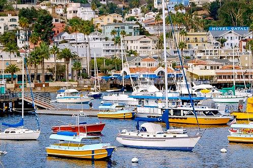 """Catalina Island CA """"Avalon Harbor"""""""
