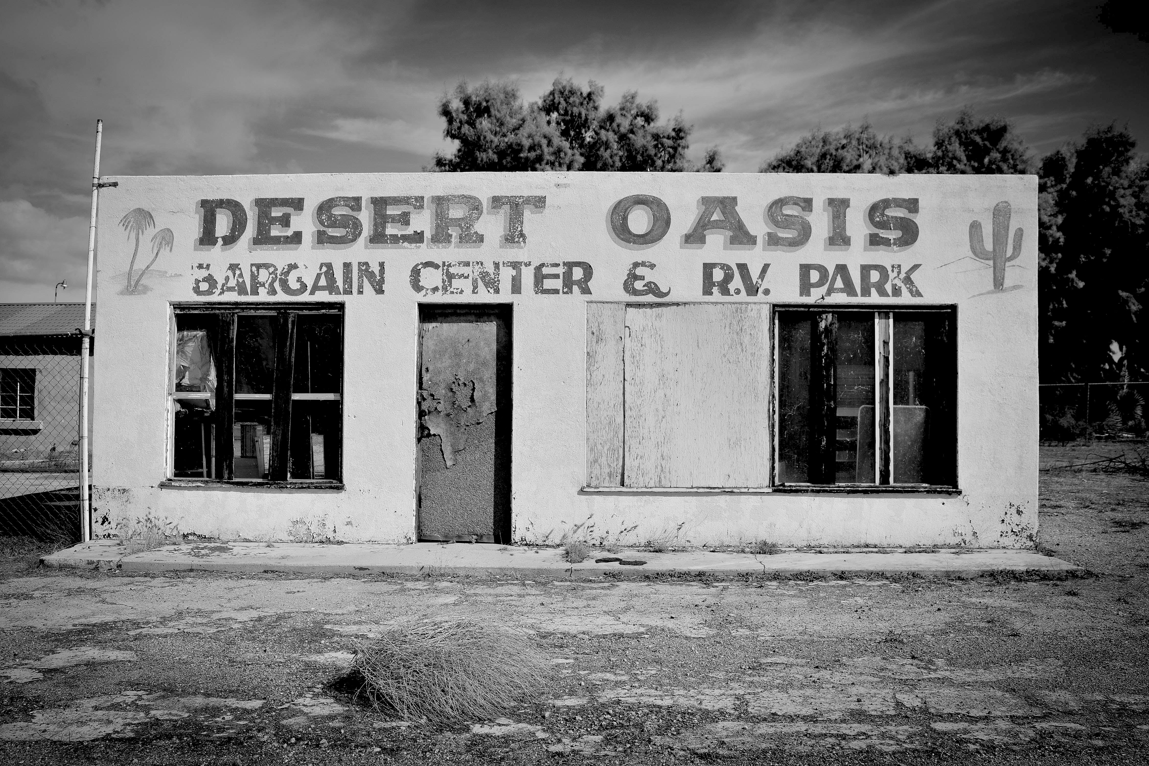 Arizona Desert Oasis B&W