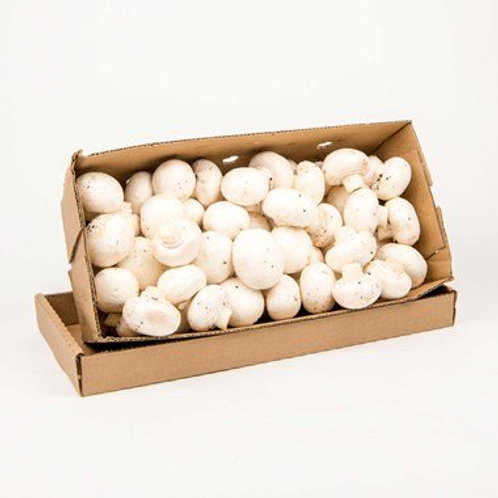 Boxes of Mushrooms