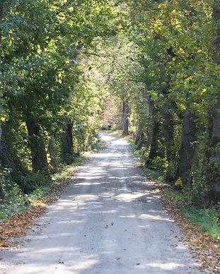 Lindholmens Gårdsväg
