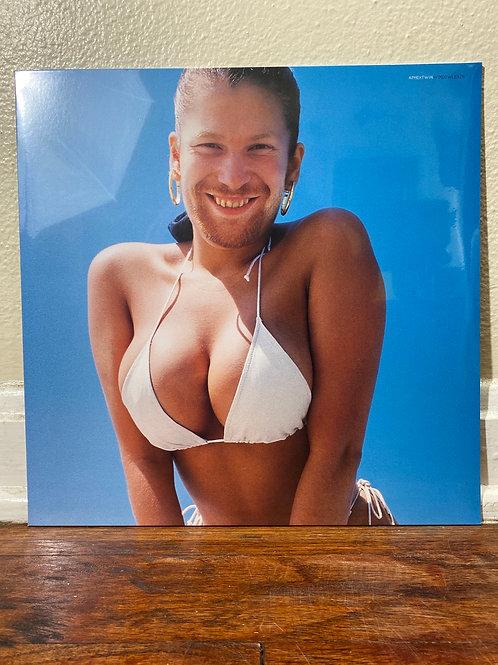 Aphex Twin- Windowlicker LP vinyl