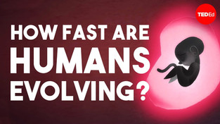 How Fast Are Humans Evolving? - TED-Ed Animation