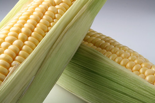 Mais / Corn Per Kilo