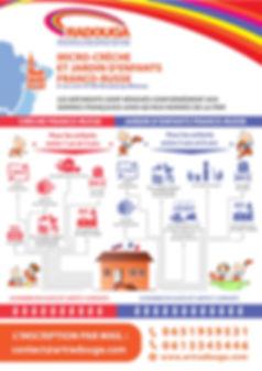 DS_Infographica_fr.jpg