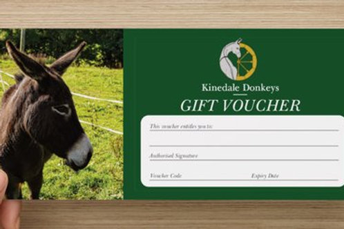 Wellbeing Donkey Session Voucher