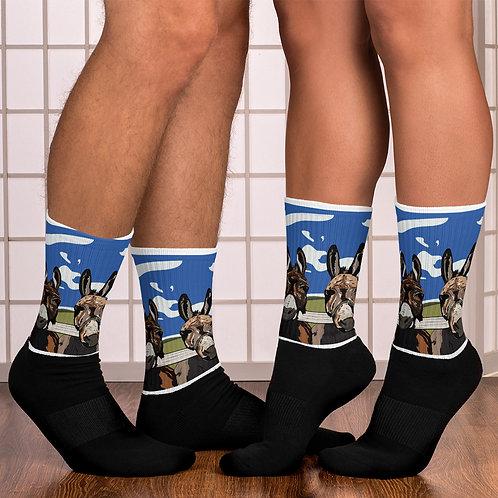 Danica D Design Socks