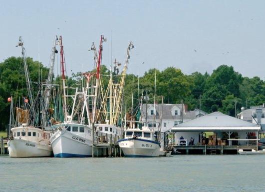 shrimp-boats3-ffqht1