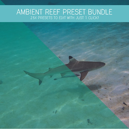 Ambient Reef UW Preset Bundle (25x Lightroom Presets)