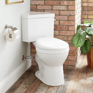 518147-corner-toilet.jpg
