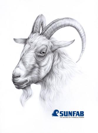 Uppdrag åt Sunfab, 2019