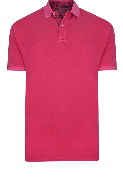 Peter Gribby -  Polo Shirt - Coral