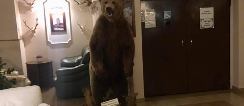 Bear left...