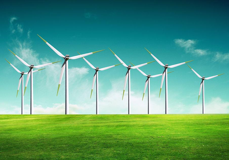 Ecology - Wind of change.jpg