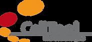 CellTool GmbH
