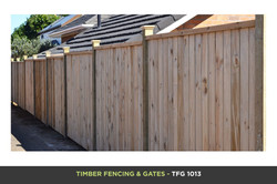 Timber Fencing and Gates - TFG 1013