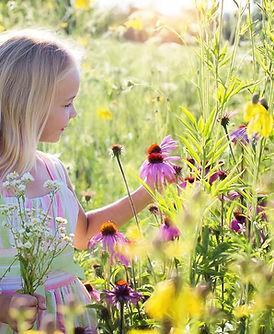 little-girl-2516578_1920 (1).jpg