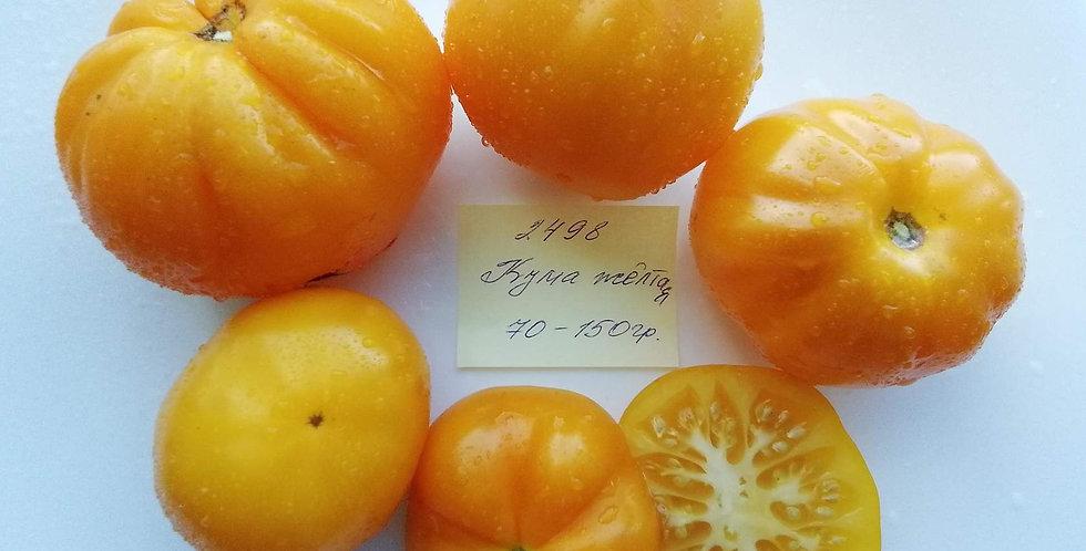 2498 - Yellow Kuma \ Кума жёлтая