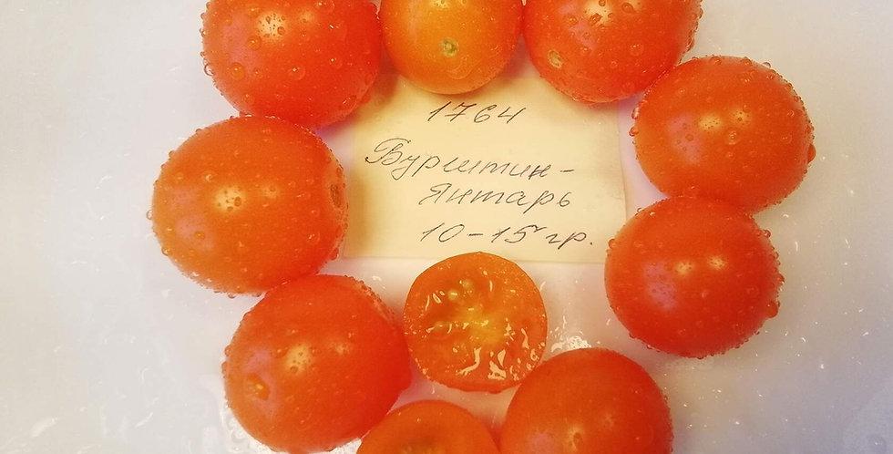 1764- Cherryb Bursztyn  / черри Бурштин-Янтарь