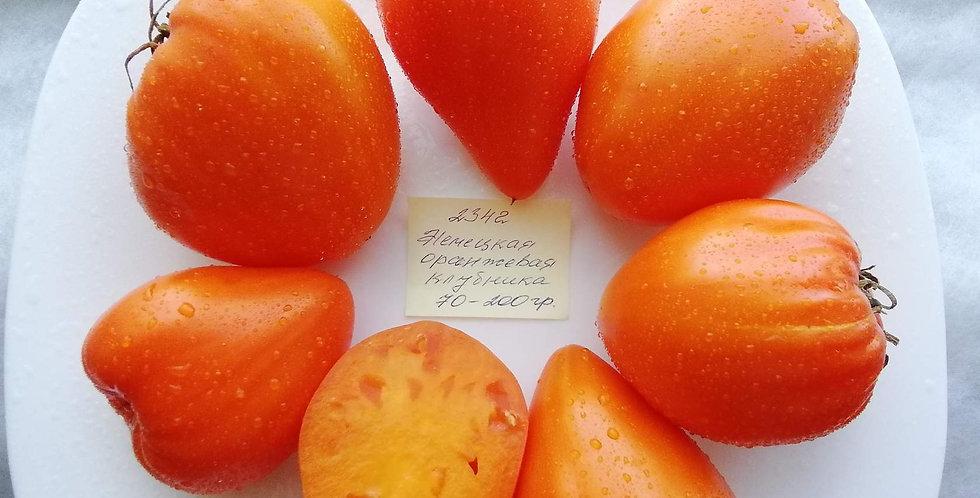 2342 - German orange strawberry \ Немецкая Оранжевая Клубника
