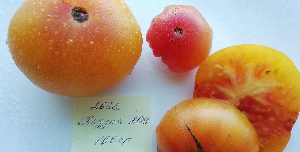 2682 - Kozula  209   / Козула 209
