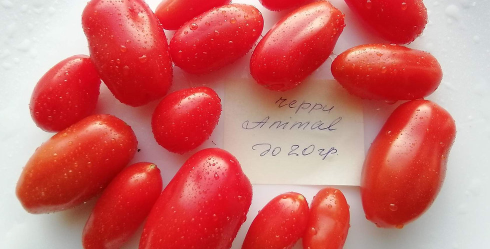 2709 - Cherry Animal \ Черри Анимал
