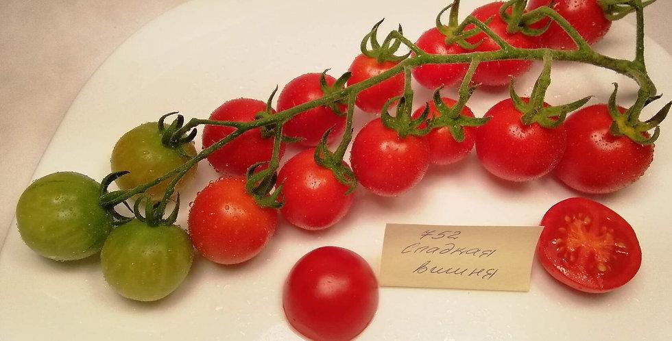 752- Sweet Cherry / Сладкая вишня
