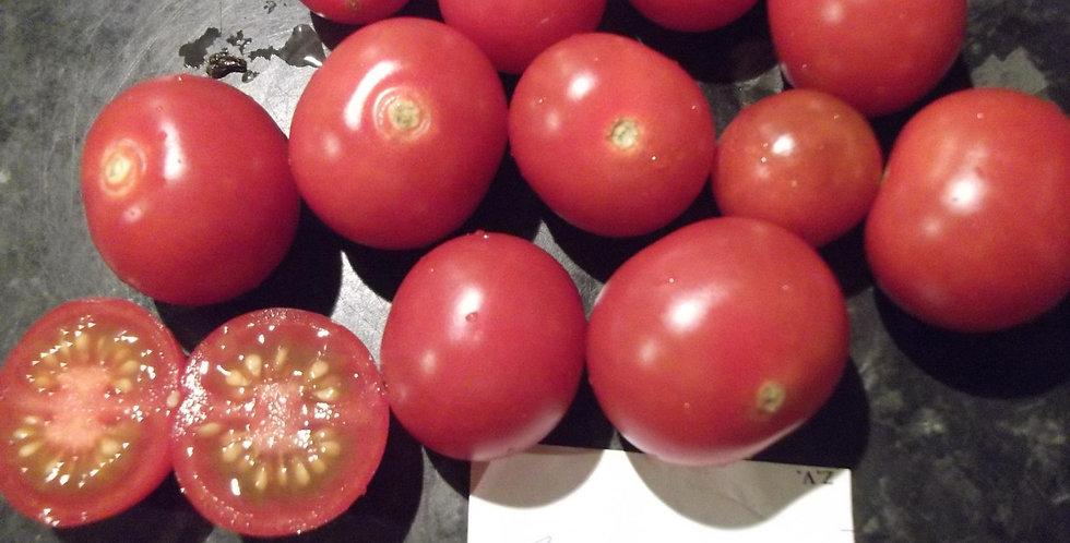 733 - Chery tomato Cherolla \ Черри томат Черрола¬