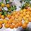 Thumbnail: 3448 - Dwarf Microberry Tomato ( Multiflora type)